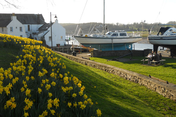 The harbour in spring